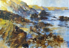Chris Forsey Rocky Shore North Cornwall