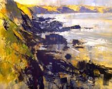 Chris Forsey RI Evening sun and seagulls