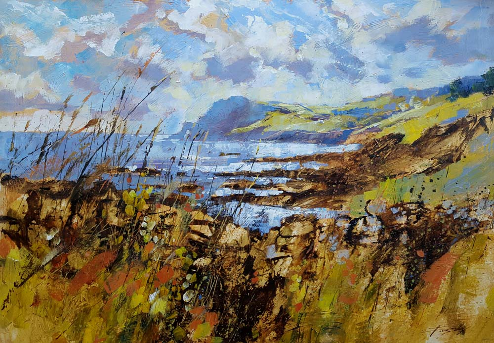 Chris Forsey - Across the bay, Prawle 20x30