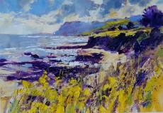 Chris Forsey - Brightness of Summer, Prawle 18x13