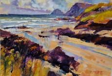Chris Forsey - Broad, sandy bay, Polzeath16x11