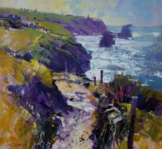 Chris Forsey - Path along the cliffs, North Cornwall 15x14
