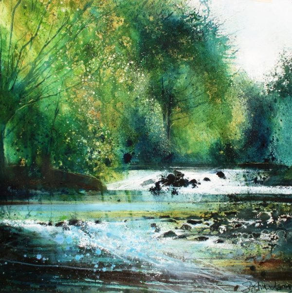 Stewart Edmondson Moss on the Rocks