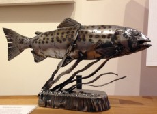 Miranda Michels - Trout still waters