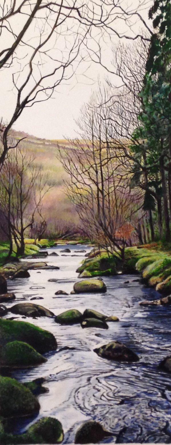 Marc Farrell Dartmoor 1