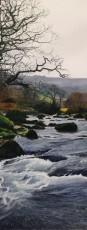 Marc Farrell Dartmoor 2
