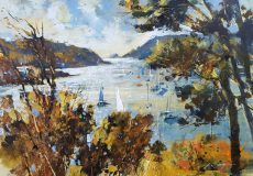 From Snapes Point, Salcombe waters 25x35