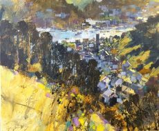 Dartmouth rooftops 50x60