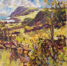 Showers and sunshine, walking to Prawle point 50x50