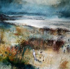 Amongst the Meadow (and to Start Point) by Stewart Edmondson