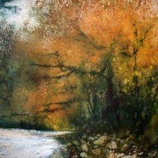 The Wild Oaks of the River Dart by Stewart Edmondson