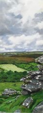 Far Away fields Dartmoor - Marc Farrell