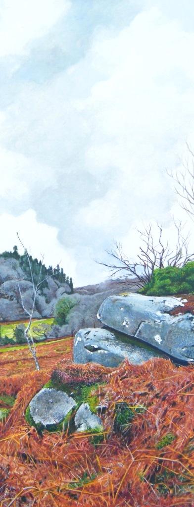 Moorland Rocks, Badgers Holt - Marc Farrell
