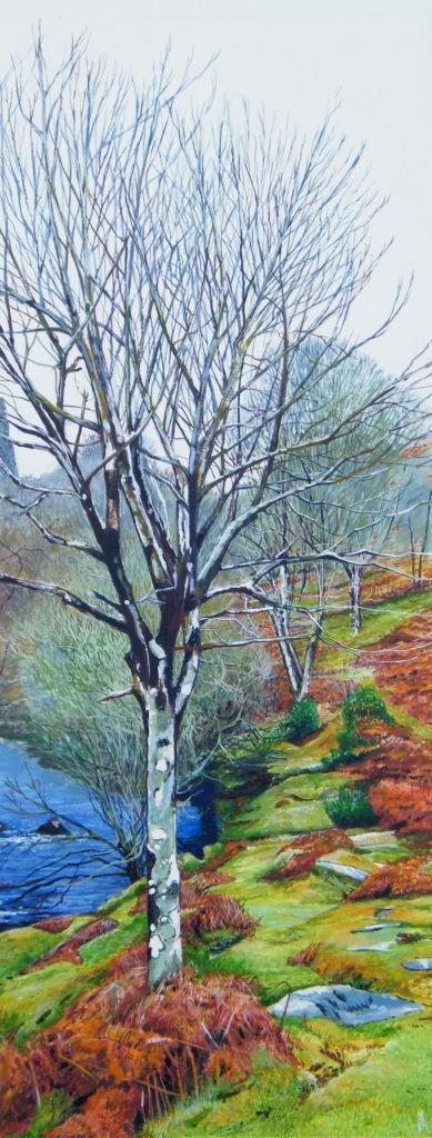 Moorland Tree - Marc Farrell