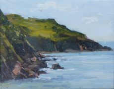 Rocks at Hope Cove' Oil 20x25cm £395