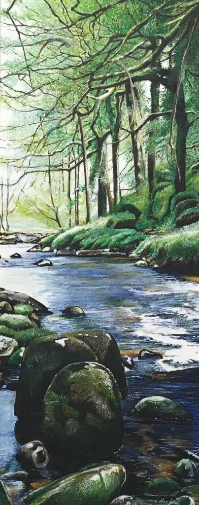 Summer flow, Badgers Holt Dartmoor - Marc Farrell