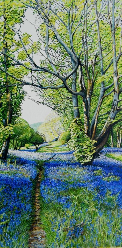 A carpet of blue, Gallants Bower, Dartmouth