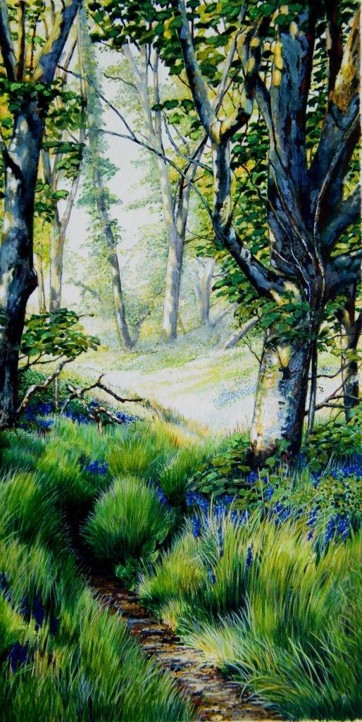 Spring dawn, Gallants Bower, Dartmouth
