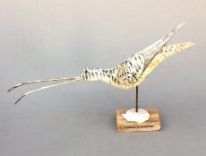 Freak Shorebird with Scallop £ 345