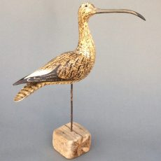 Single Curlew £ 795