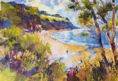 Sparkling summer, Blackpool Sands 36x50 950