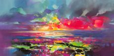 50 x 100cm Spectrum Sky 2 for DART