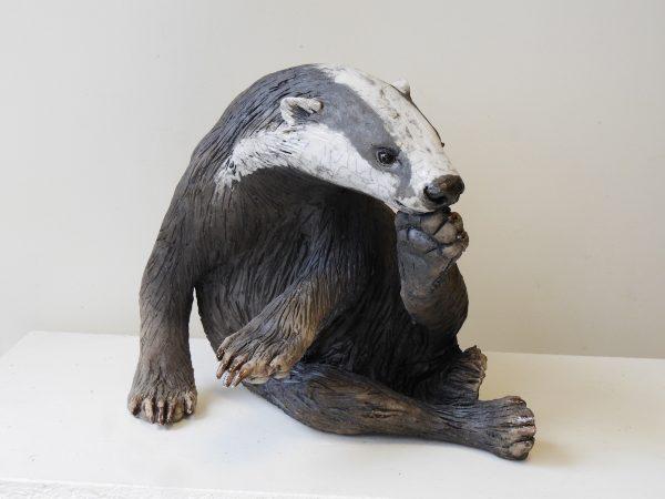 badger concentration (1) - Copy