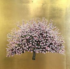 Jack Frame Pink Blossom 2
