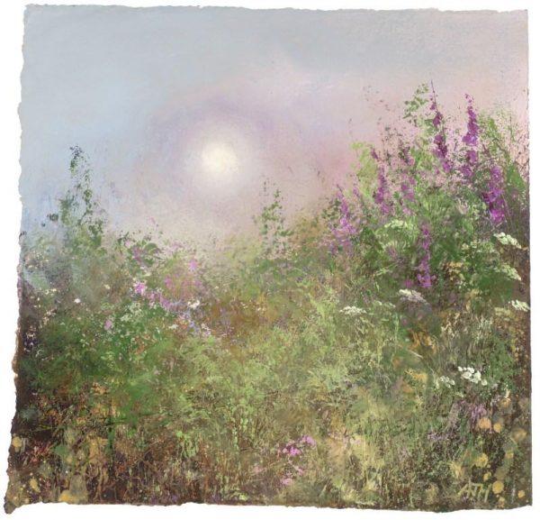 Evening-Light-and-Foxgloves-Little-Datmouth...oil-on-paper...21-x-21cm