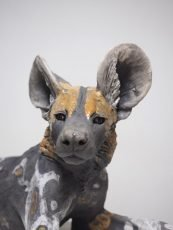 Nick Mackman Wild Dog Pup