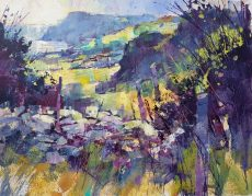 Chris Forsey Sunlit beauty, Prawle point vista 40x30 paper £795