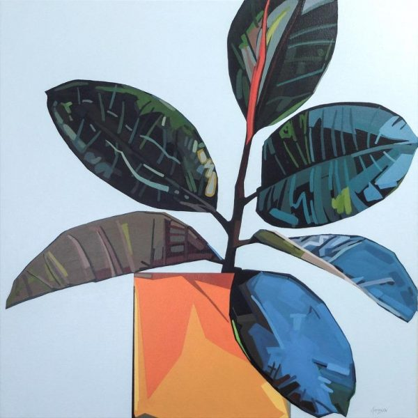 Donald Maclean Ficus Elastica_OrangePot_70 x 70cm
