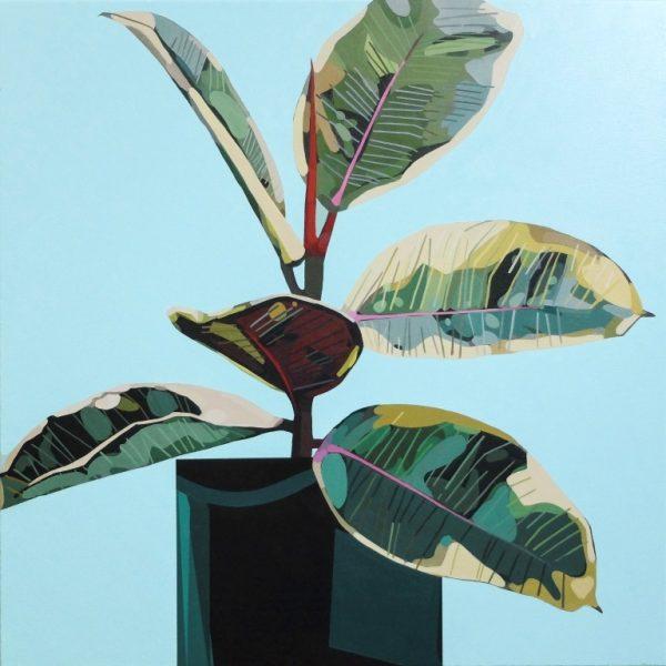 Donald Maclean Ficus_Variegations_Turquoise+Blue_70 x 70 cm