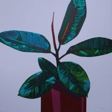 Donald Maclean Dark Ficus on Lilac - 70x70 £1100
