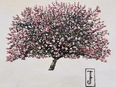 Jack Frame Blossom Sketch 1 on paper 32 x 24