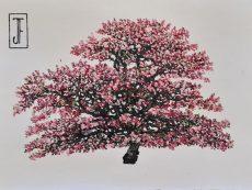 Jack Frame Blossom Sketch 3 on paper 32 x 24