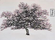 Jack Frame Blossom Sketch 4 on paper 32 x 24