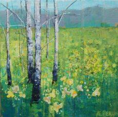 Daffodils & Birch 20x20 £450