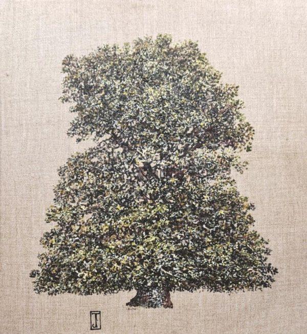 Lone Oak 37cm x 40cm £825