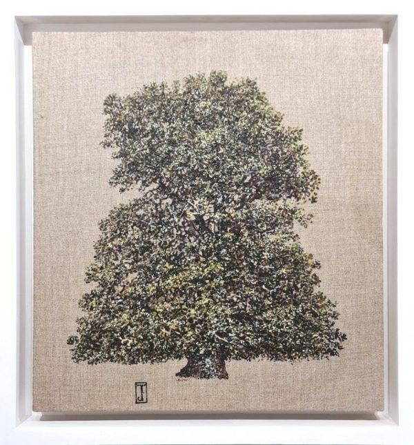 Lone Oak (frame) 37cm x 40cm £825