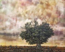 Lone Tree 95cm x 97cm £2400
