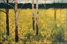 Summer Birch 15x10 £250