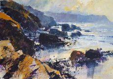 Wild South Hams Coast 40x58 £1200